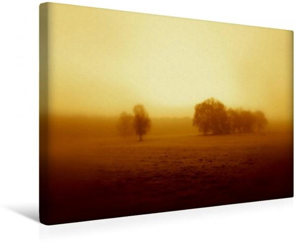 Wandbild Im Nebel