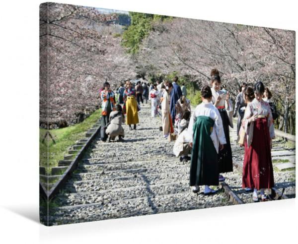 Wandbild Kyoto - Schrägaufzug Biwasee-Kanal