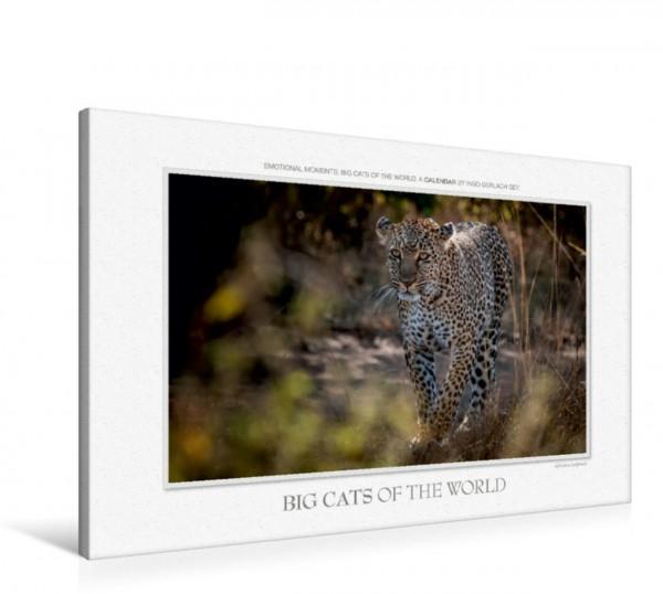 Wandbild Emotional Moments: Big Cats of the World UK-Version