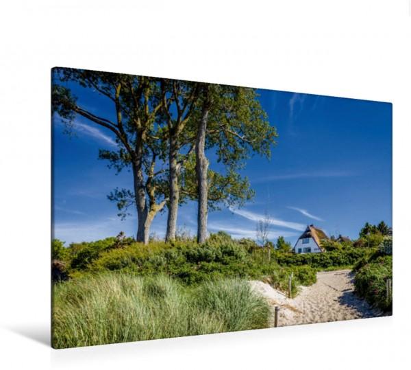 Wandbild Strand in Ahrenshoop