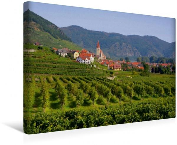 Wandbild Weissenkirchen in der Wachau in den Weinbergen in den Weinbergen