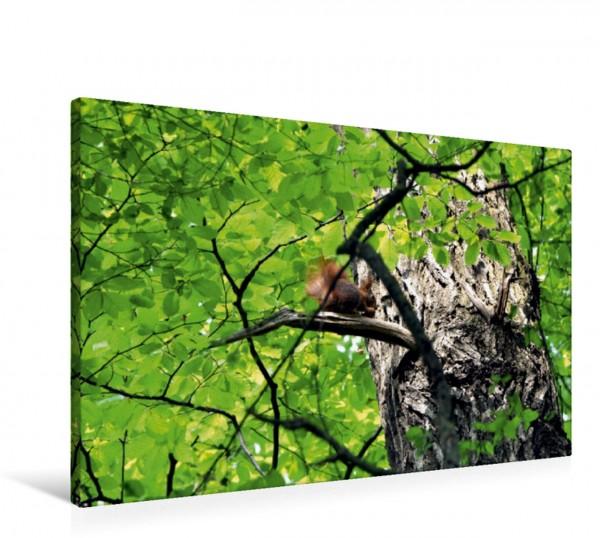Wandbild Das Blätterkleid