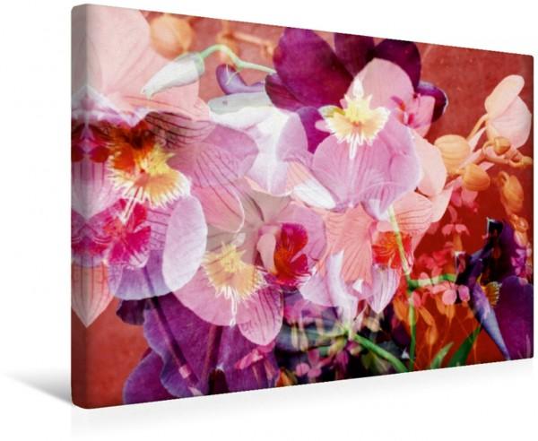 Wandbild Leidenschaftliche Orchidee Wenn man Liebe in Worte fassen könnte Wenn man Liebe in Worte fassen könnte