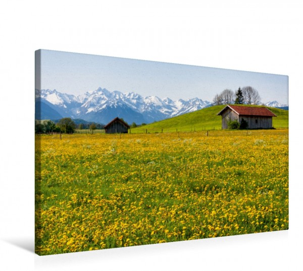 Wandbild Wiese bei Agathazell