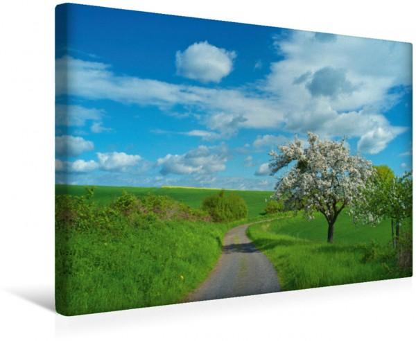Wandbild Blühender Baum in der Osteifel