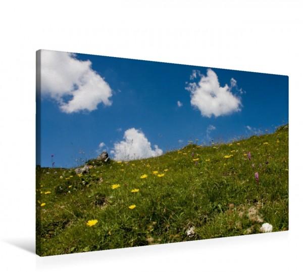 Wandbild Bergwiese Kontraste Kontraste