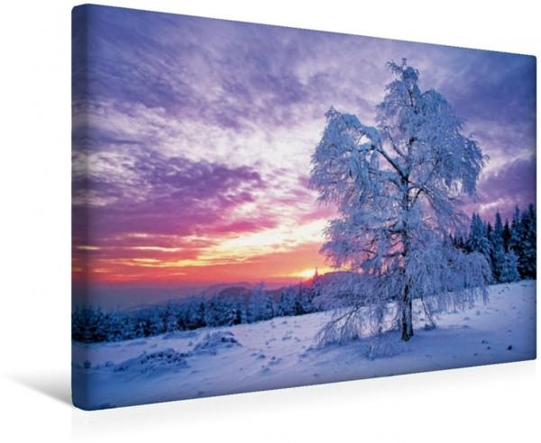 Wandbild Wintertraum im Schwarzwald Sonnenuntergang im winterlichen Schwarzwald Sonnenuntergang im winterlichen Schwarzwald