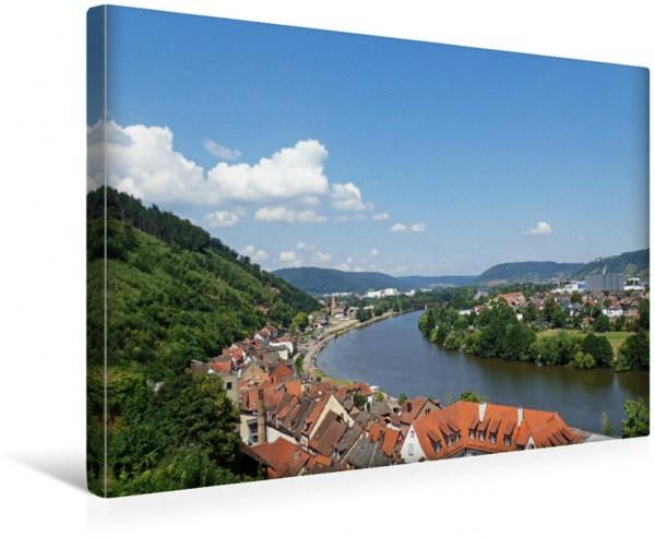 Wandbild Blick von der Mildenburg in Miltenberg auf den Main