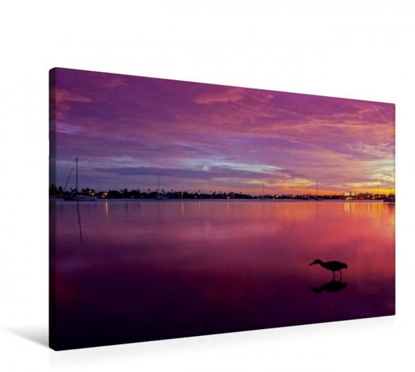 Wandbild FLORIDA St. Petersburg Sonnenuntergang Szene mit Vogel Szene mit Vogel