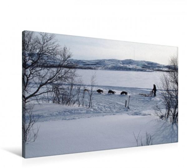 Wandbild Kirkenes Huskyschlitten in Kirkenes Huskyschlitten in Kirkenes