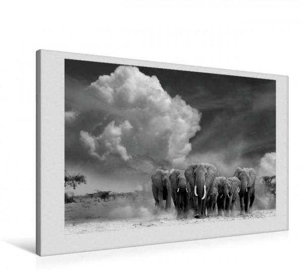 Wandbild Elefantengruppe in der afrikanischen Steppe