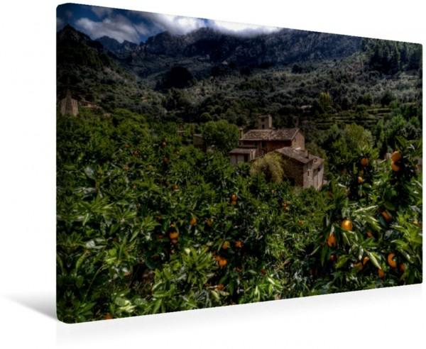 Wandbild Mallorca wundervolles Fornalutx