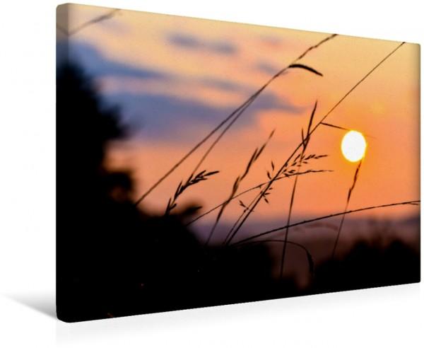 Wandbild Romantische Naturkulisse zum Sonnenaufgang
