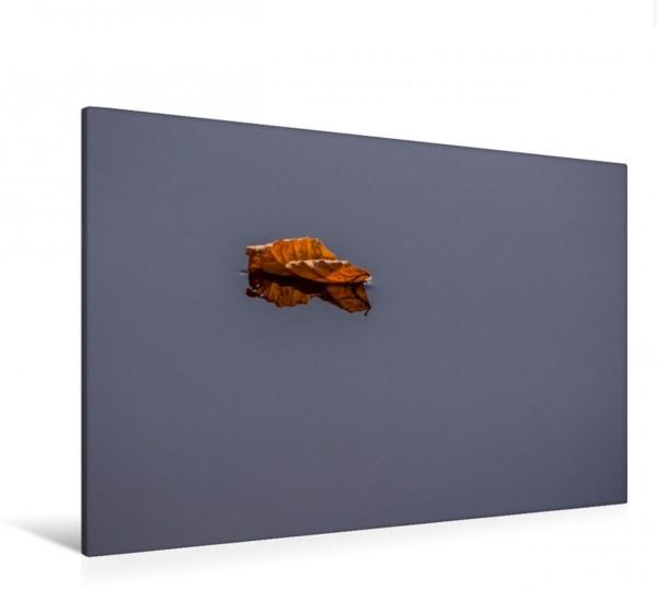 Wandbild Verdorrtes Blatt auf Wasser Verdorrtes Blatt auf Wasser schwimmend und sich spiegelnd Verdorrtes Blatt auf Wasser schwimmend und sich spiegelnd