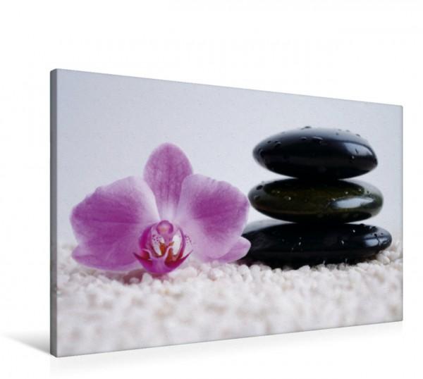 Wandbild Orchidee Spa