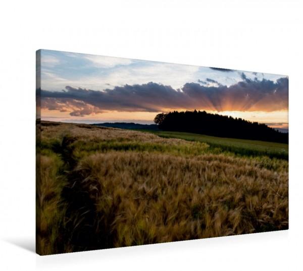 Wandbild Kurz nach Sonnenuntergang, Oberbottigen