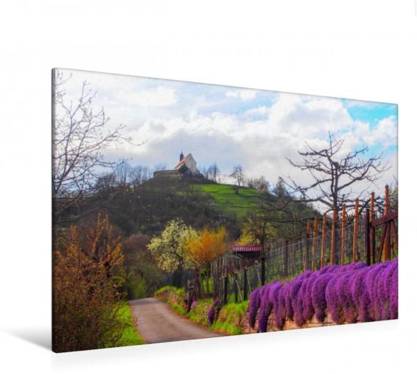Wandbild Premiumwandern von Hirschau zur Wurmliger Kapelle Premiumspazierwege am Früchtetrauf Premiumspazierwege am Früchtetrauf