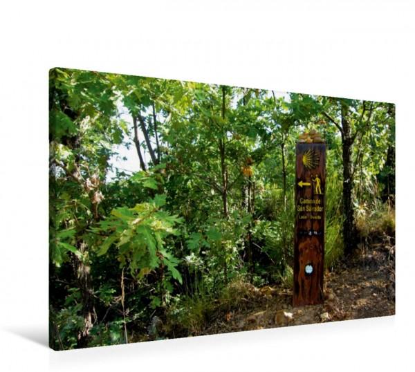 Wandbild Holzernes Wegzeichen