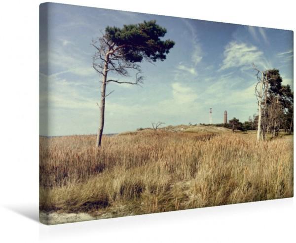 Wandbild Prerow Weststrand