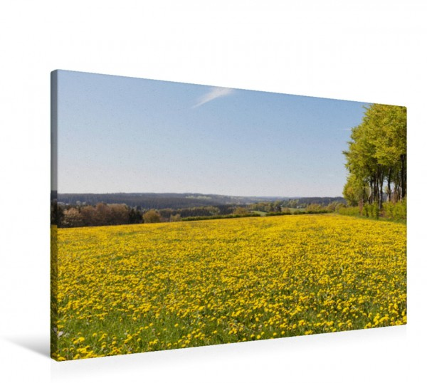 Wandbild Eifel - Blumenwiesen Happiness