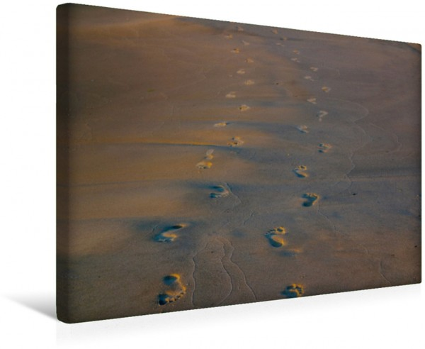 Wandbild Goldener Sand am Nordseestrand
