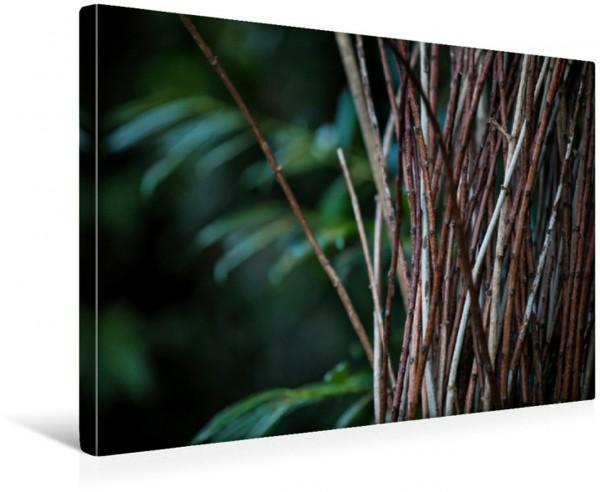 Wandbild Reisig vor einem Farn