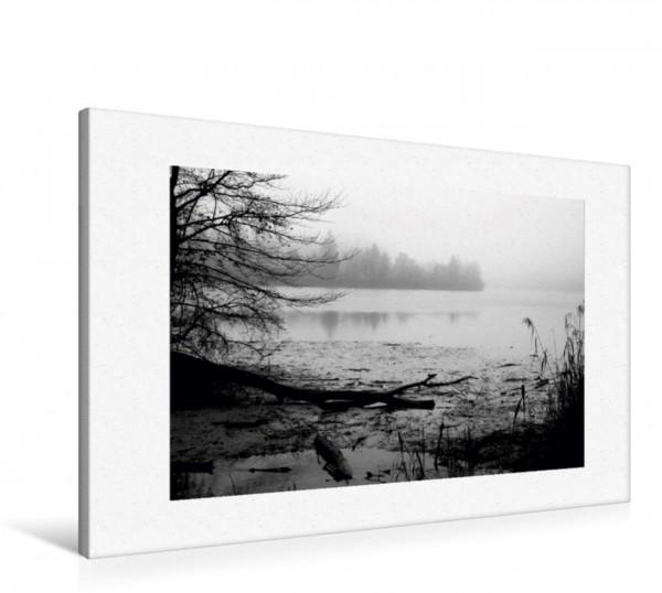 Wandbild Ufervegetation Nebel über dem Wasser Nebel über dem Wasser
