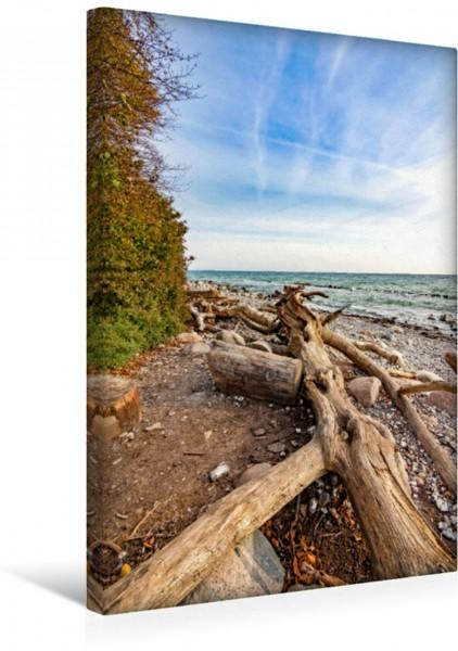 Wandbild Rügen Strandblick Der Steinstrand unterhalb der Kreideküste Der Steinstrand unterhalb der Kreideküste
