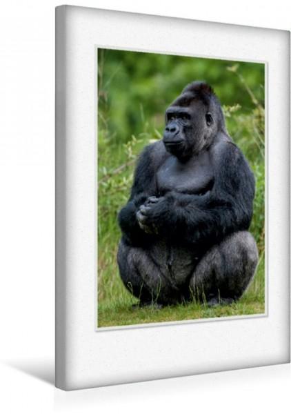 Wandbild Emotionale Momente: Aus dem Leben der Familie Gorilla. CH-Version