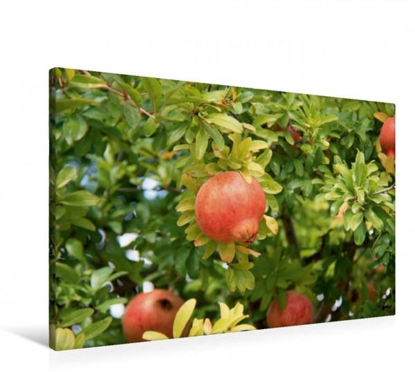 Wandbild Granatäpfel