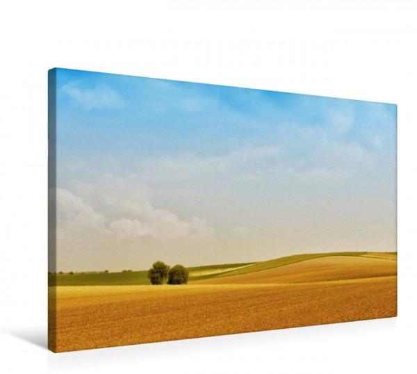 Wandbild Felder nach der Ernte