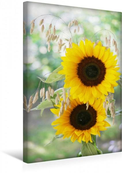 Wandbild Zwei Sonnenblumen und Großes Zittergras