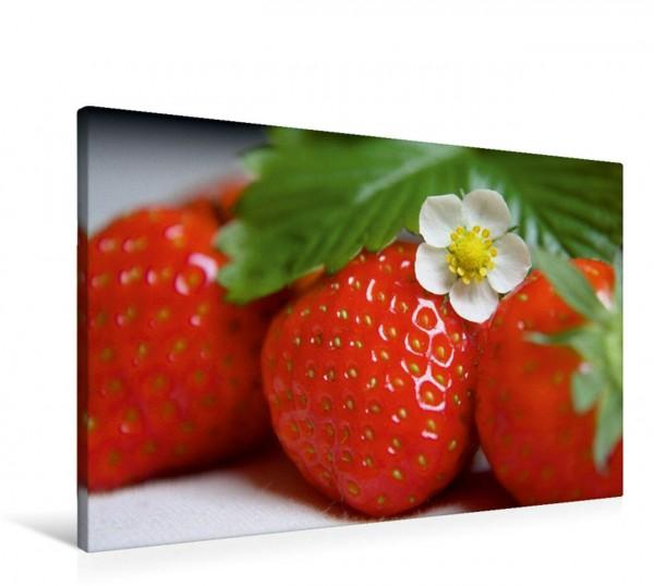Wandbild Erdbeerzeit