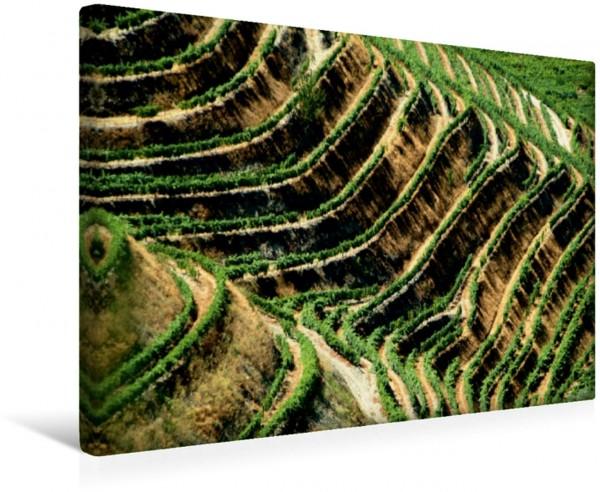 Wandbild Erdmuster Dourotal Typische Landschaftsmuster im Dourotal / Nordportugal Typische Landschaftsmuster im Dourotal / Nordportugal