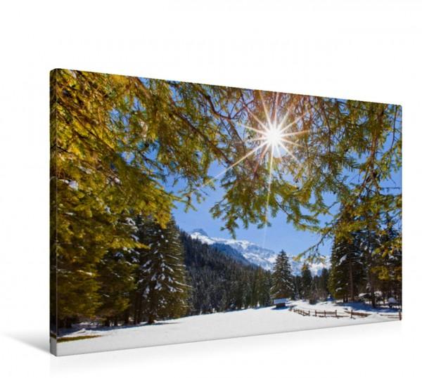 Wandbild Waldspaziergang in Kleinarl