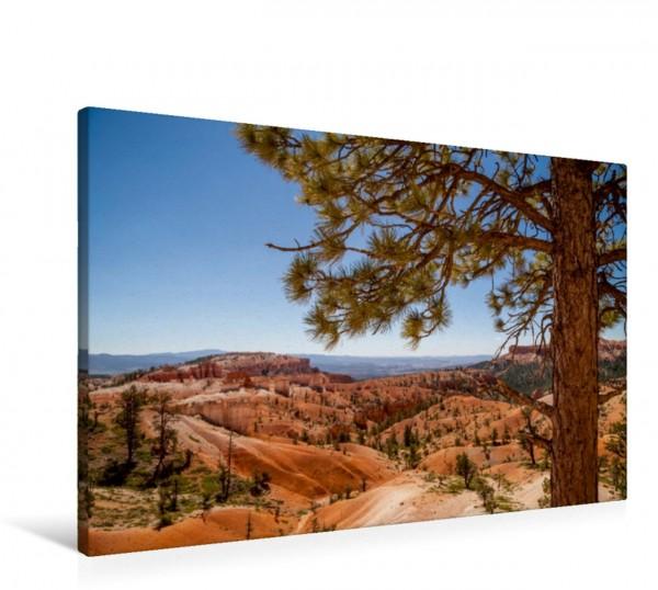 Wandbild BRYCE CANYON Blick über das Tal Landschaft in Utah Landschaft in Utah