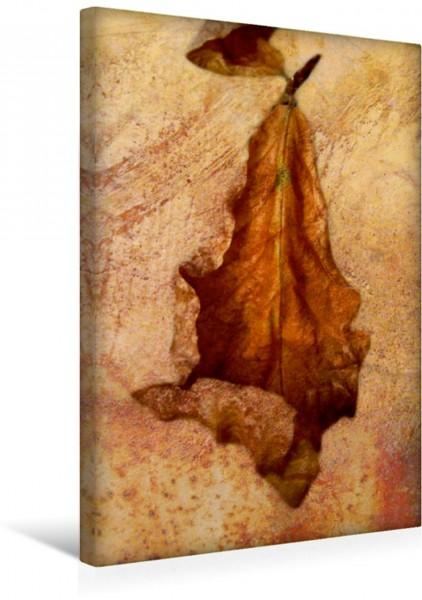 Wandbild Ein Herbstblatt Herbstimpressionen Herbstimpressionen