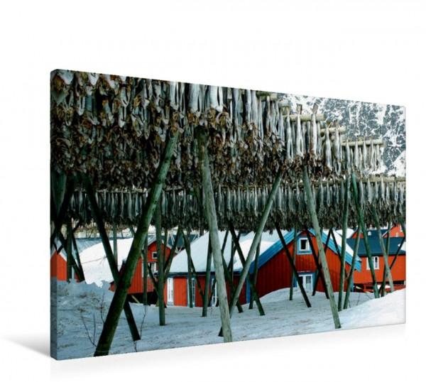 Wandbild Stockfisch-lutefisk, Lofoten