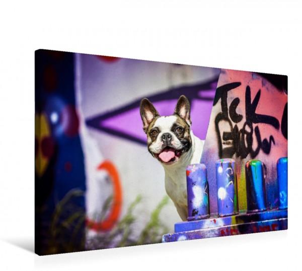 Wandbild French Bulldog sitzt vor einer Graffitiwand