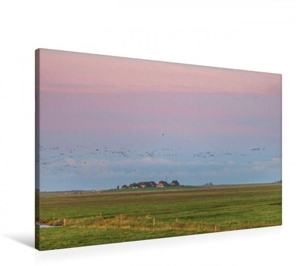 Wandbild Sonnenaufgang auf der Hallig Langeneß Pastellfarben zeigt sich der Himmel über einer Warf auf der Hallig Langeneß Pastellfarben zeigt sich der Himmel über einer Warf auf der Hallig Langeneß