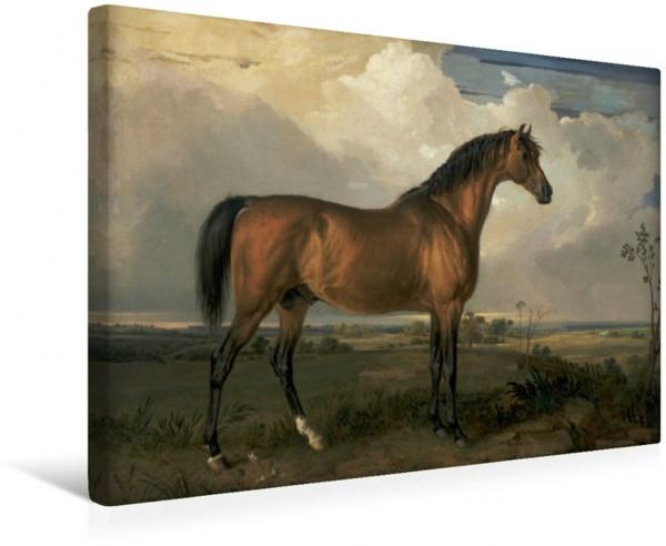 Wandbild Pferdegemälde