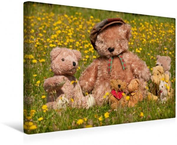 Wandbild Familienausflug Teddy Teddy