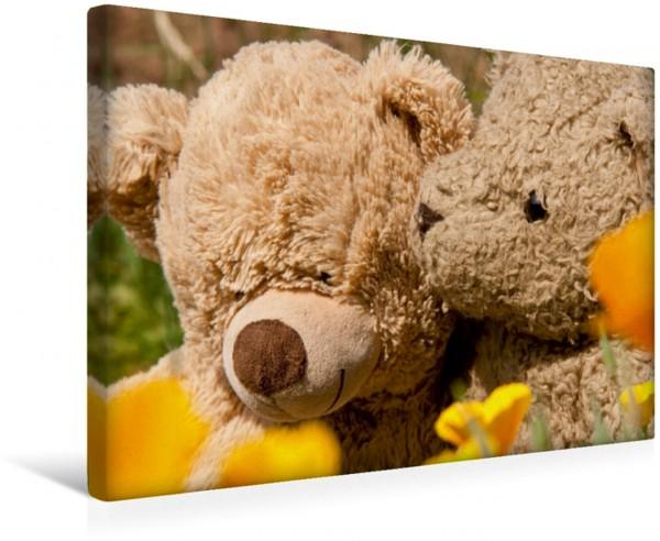 Wandbild Echte Bärenfreundschaft. Teddys Teddys