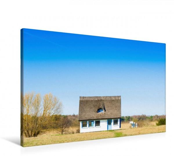 Wandbild Reetgedecktes Haus, Neuendorf-Plogshagen, Insel Hiddensee, Mecklenburg-Vorpommern, Deutschland Das wunderschöne Foto dieses verwunschenen Häuschens auf einer Wiese am Wald lädt zum Träumen ei