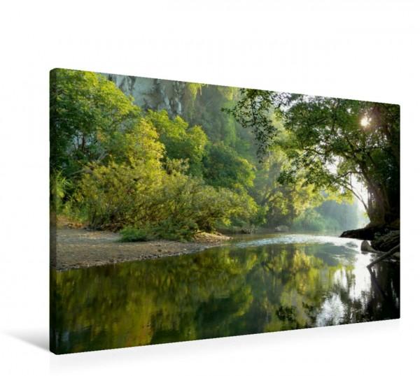 Wandbild Fluss durch den Regenwald