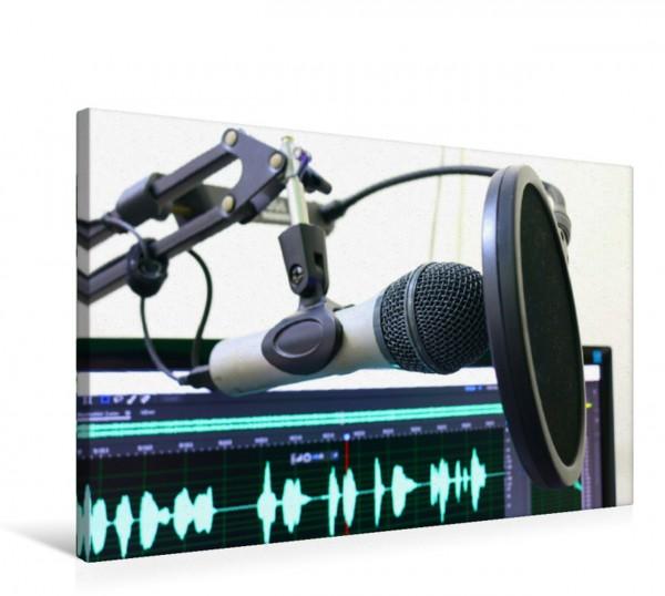 Wandbild Tonstudio - Mikrofon mit Popschutz