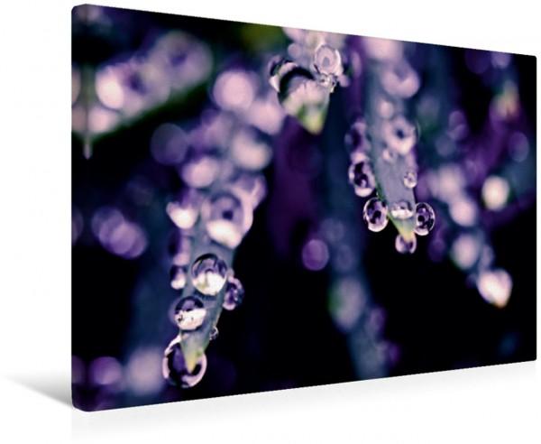 Wandbild Wasserspritzer