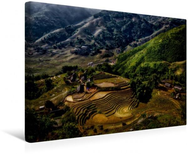 Wandbild Sapa Valley leere Reisfelder leere Reisfelder