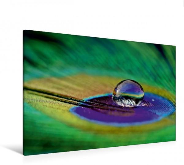 Wandbild Wassertropfen - glitzernde Perlen der Natur
