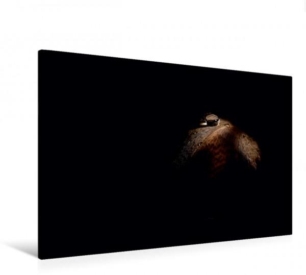 Wandbild silence